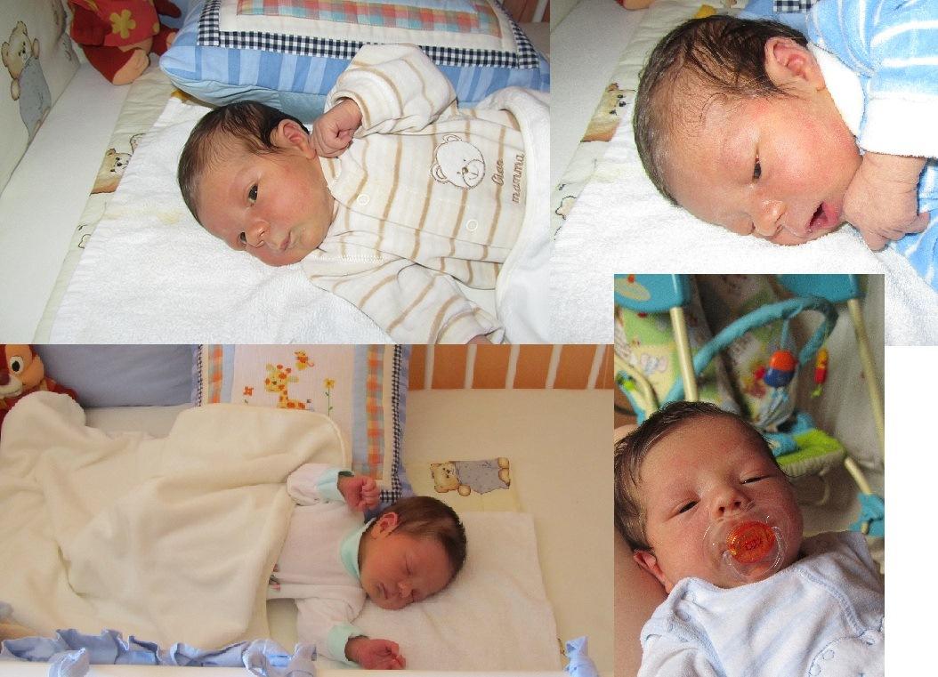 Bence baba képekben | Babavárásom története